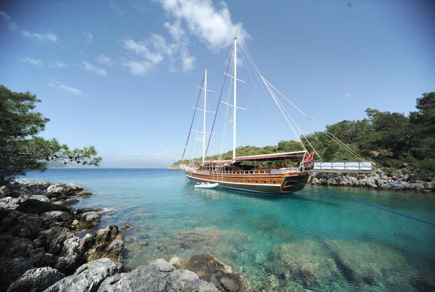 Deniz Felix Balina Gulet Turkey